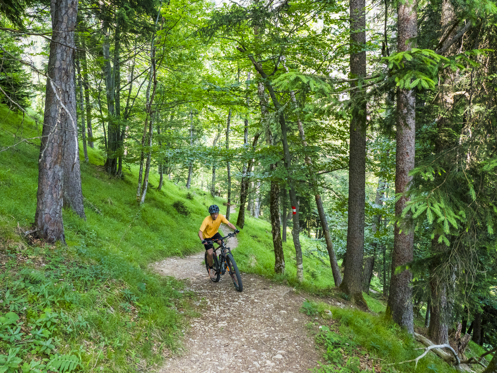 Bike Training in Innsbruck