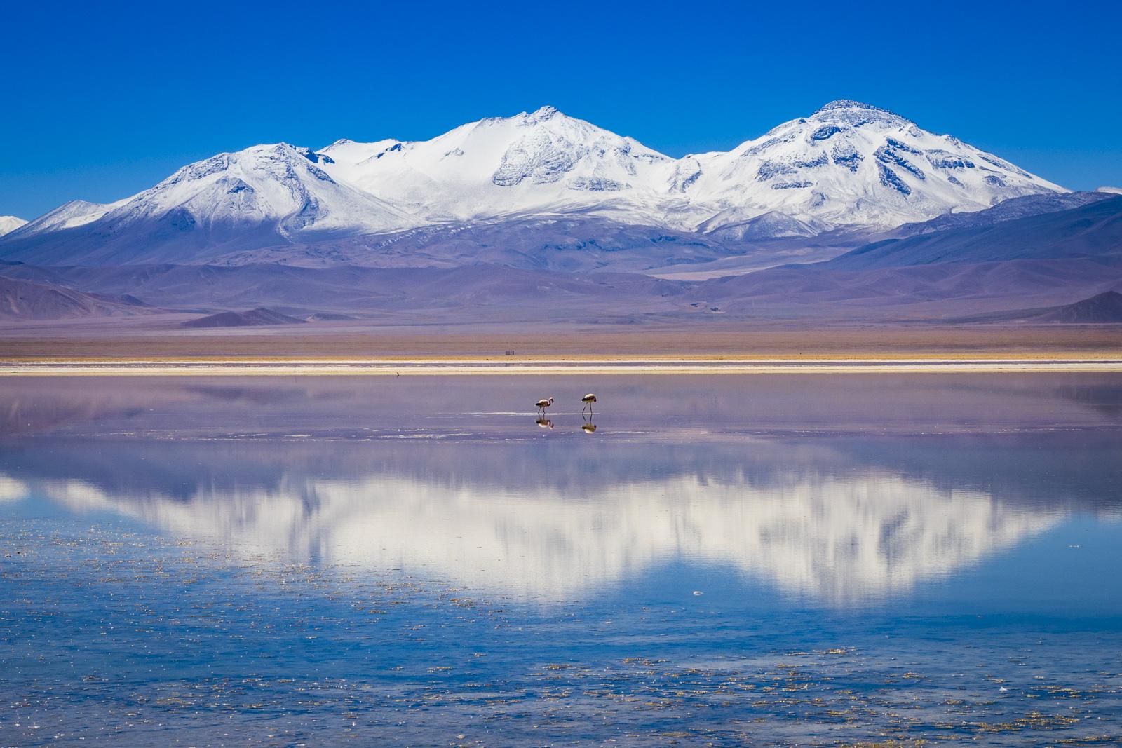 Fotoreise Chile und Bolivien (mit Diamir)
