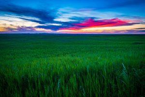 Sonnenuntergang im Badlands NP