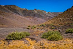 Atacama Wüste, Chile