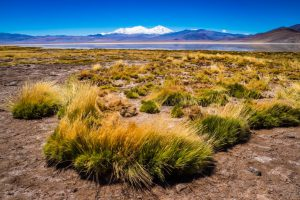 Nevado Tres Cruzes Vulkan, Laguna Rosa, Chile
