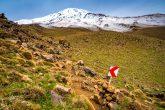 Bergsteigen im Iran - idiotensicher :-)