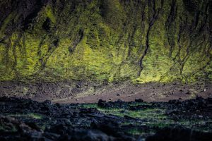Pure Iceland