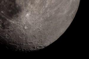 Mond (Crop)