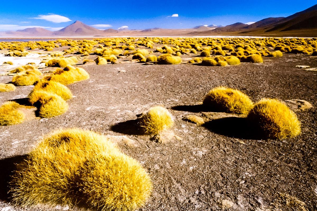 Fotoreise Chile und Bolivien