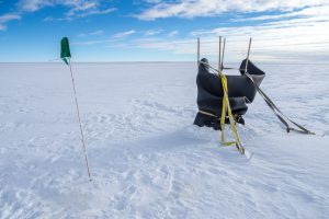 Überraschung in der Antarktis